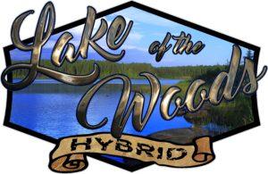 Low Hybrid Logo